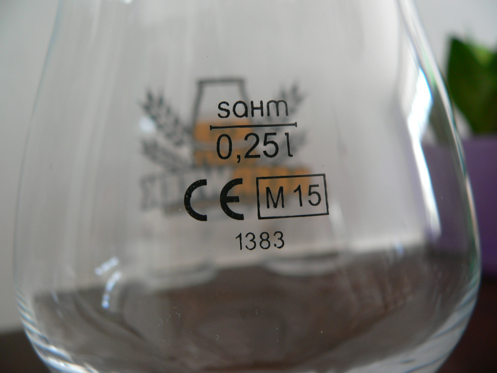 P1110113